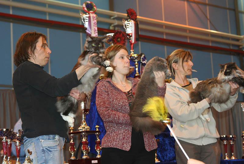 Bijou lors de l'exposition de Toulouse du 10 et 11/03/07 Photo210