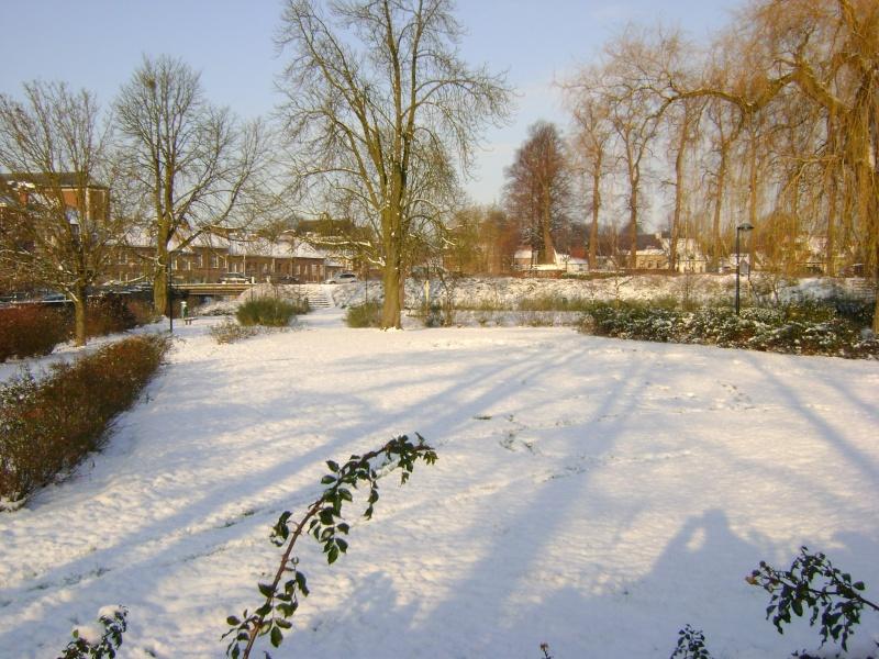De la neige pour les prochains jours et durant cet hiver. Dsc05110