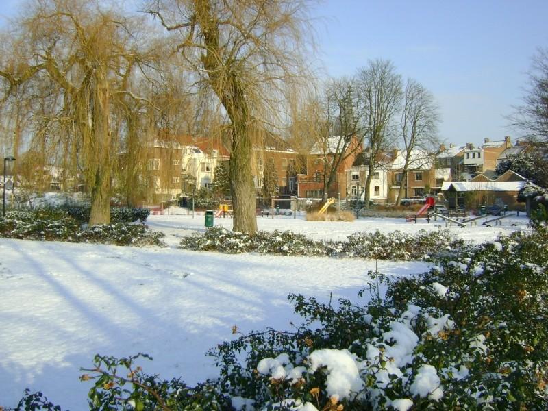 De la neige pour les prochains jours et durant cet hiver. Dsc05111