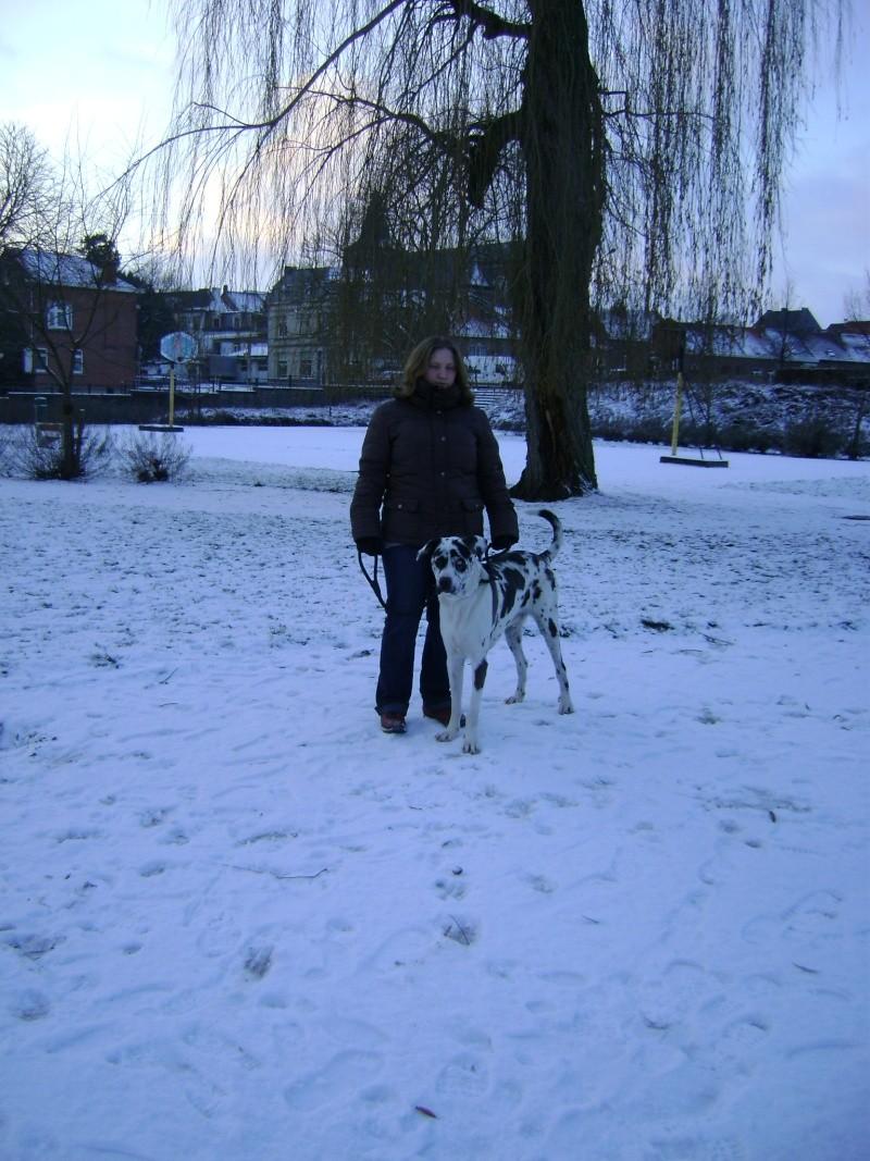 De la neige pour les prochains jours et durant cet hiver. Photo_12