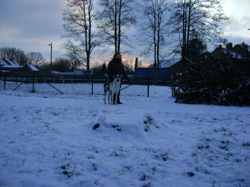 De la neige pour les prochains jours et durant cet hiver. Photo_15