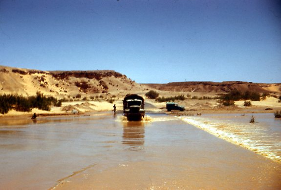 inondations au sahara - Page 2 Img16410