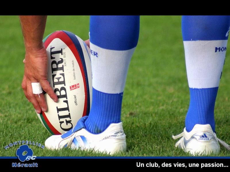 Vos plus belle photos de rugby - Page 3 Wp3-g10