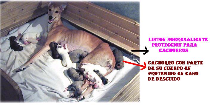 PROTECCION PARA QUE PERRAS NO APLASTEN LOS CACHORROS Ptotec10