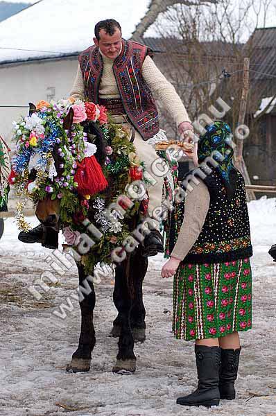 chevaux : harnachement divers ..... Rouman11