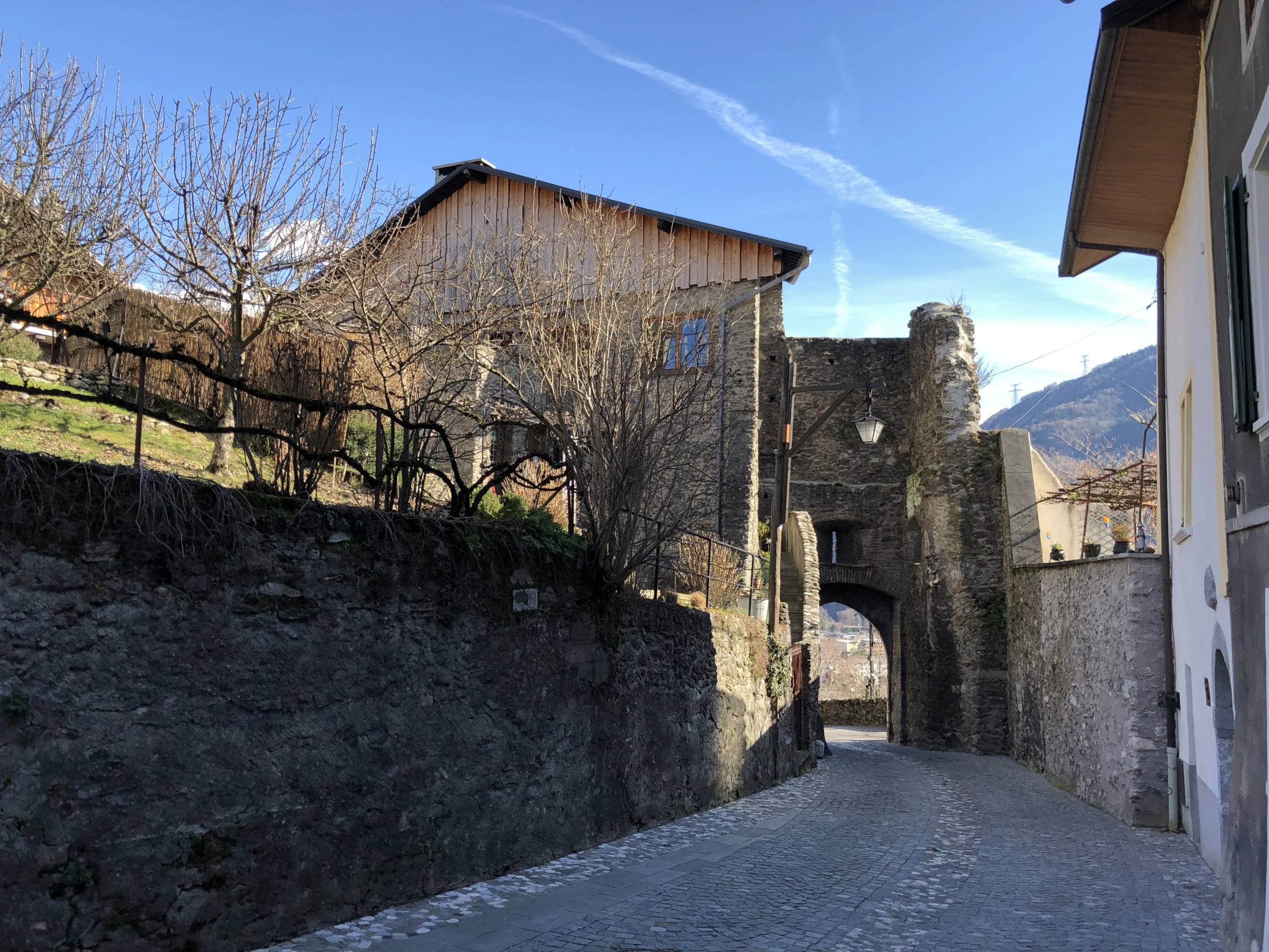 Petites balades en Rhône-Alpes - Page 2 Confla13