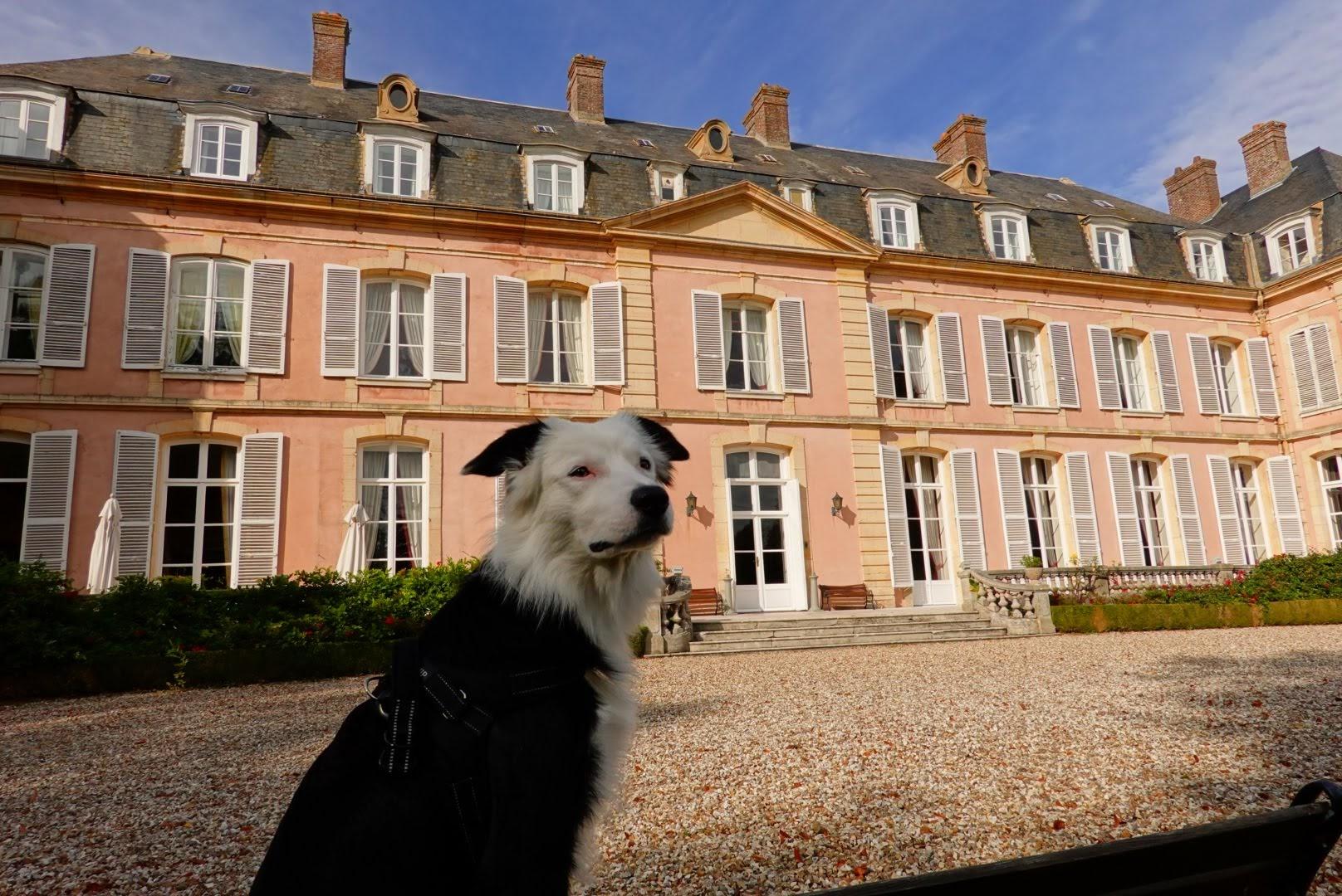 TOUR DE FRANCE VIRTUEL - Page 32 Tsge1171