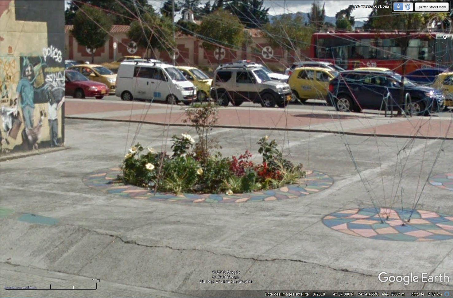 Comment remplacer du béton par des fleurs ? [Teusaquillo, Bogotá - Colombie] Tsge_623
