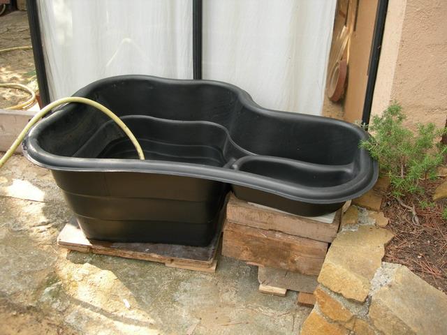 notre bassin pour tortues... Dscn6911