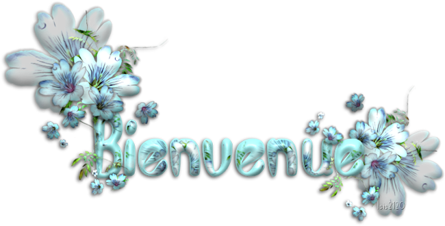 bienve13