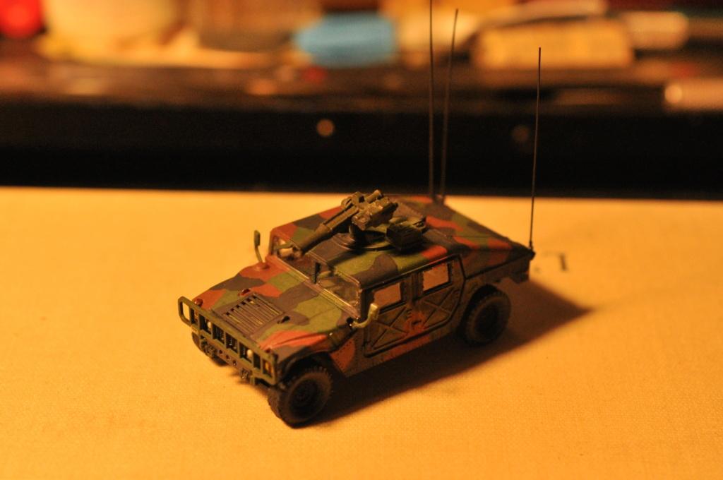 Exercice - Hummer Revell et figurines Preiser - 1/72 Dsc_0531