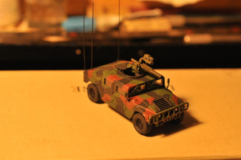 Exercice - Hummer Revell et figurines Preiser - 1/72 Dsc_0532