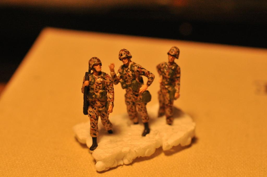 Exercice - Hummer Revell et figurines Preiser - 1/72 Dsc_0533