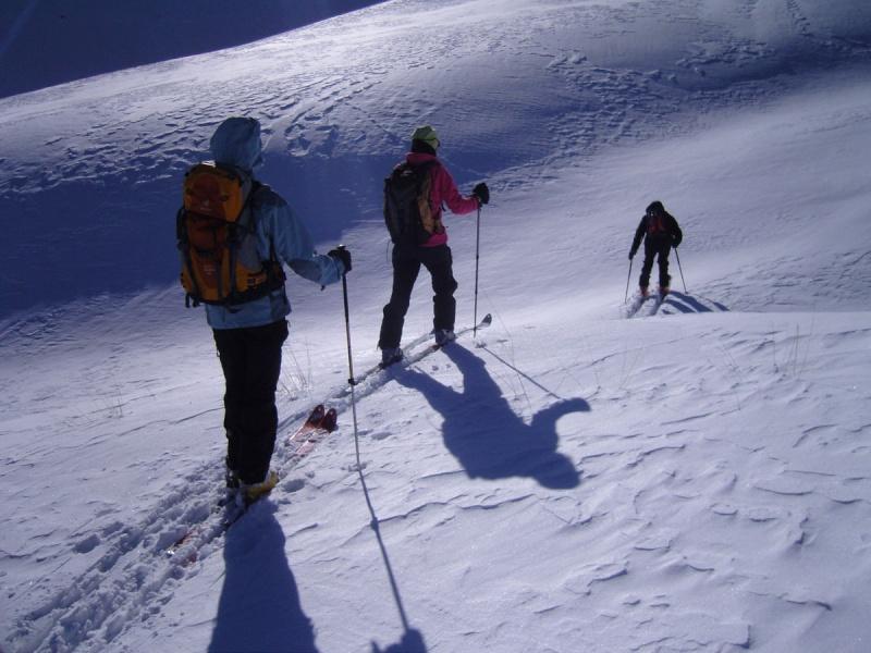 Ski secteur Sestrière / Alpe Snc13512