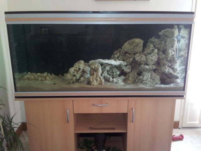biotope tanganika mick 20120912