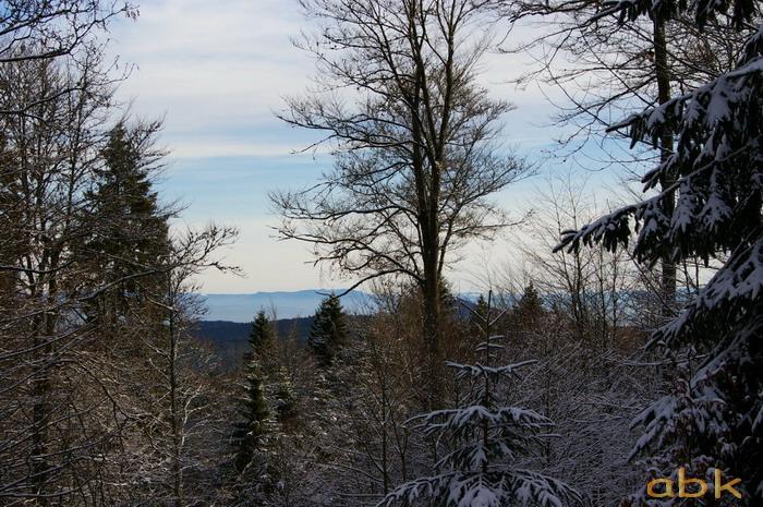 Balade dans la neige Imgp1820