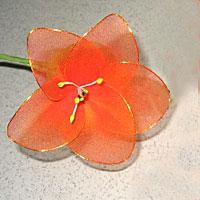 Cách làm hoa voan Locnon13