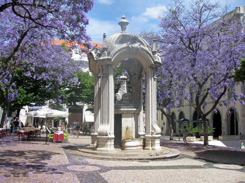 Escapade à Lisbonne Img_5123