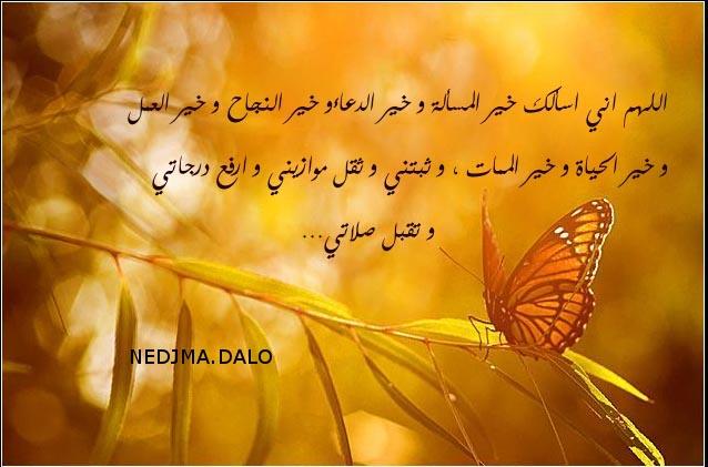dou3a Ebd85510