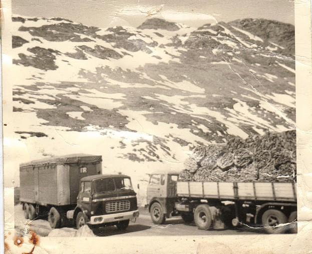 Des photos de camions bétaillères à moutons et d'autres photos de camions aussi conduit par Henry Elie . - Page 3 Copie_11