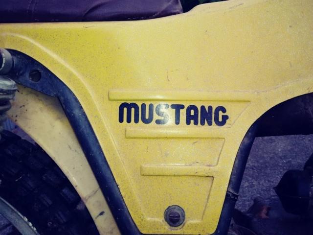 Torrot Mustang  20180916