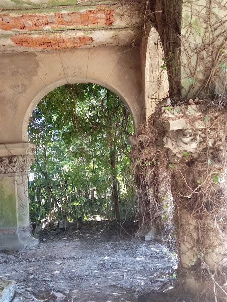Culto a los lugares abandonados - Página 2 20190341