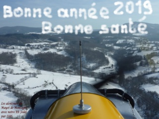 Bonne Année 2019 Voeux_10