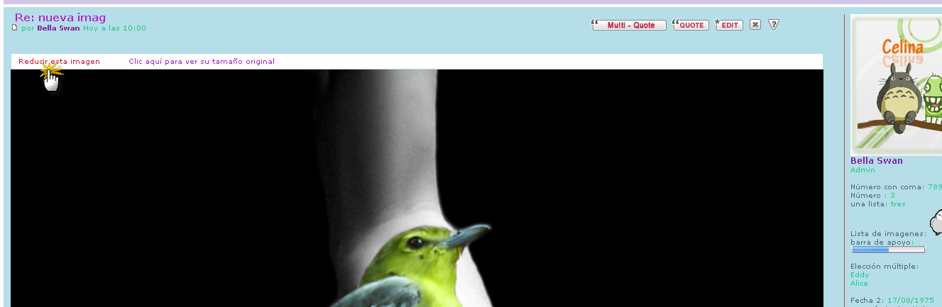 aumentar imagenes - Dimensionar automaticamente las imagenes en los temas Img210