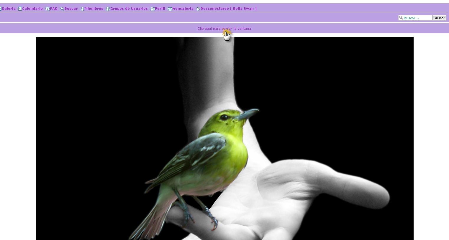 aumentar imagenes - Dimensionar automaticamente las imagenes en los temas Img310