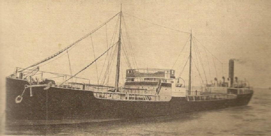 * MOTRICINE (1914/1914) * Numeri28