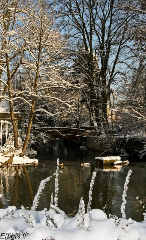 Chartres et Compiègne en Décembre 20100116