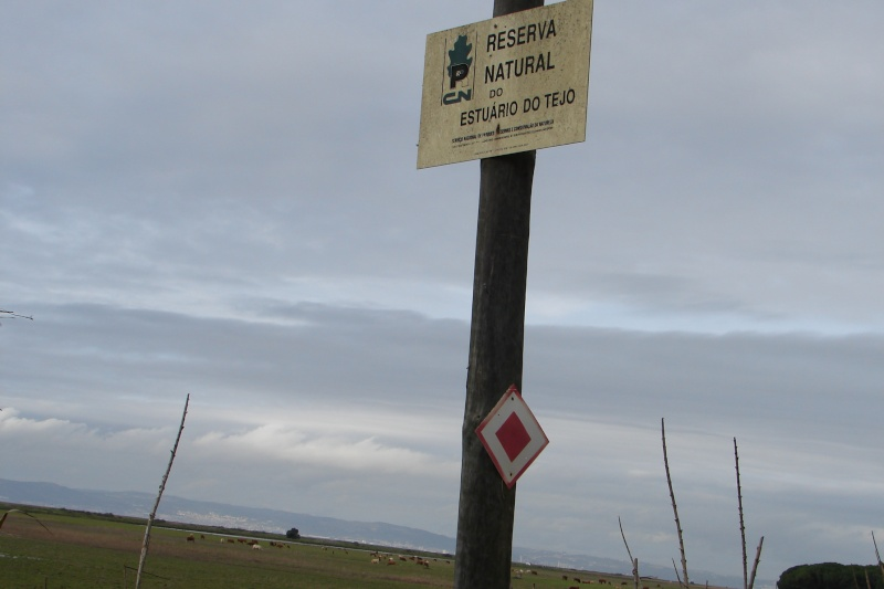 PAsseio pelo campo Dsc07213
