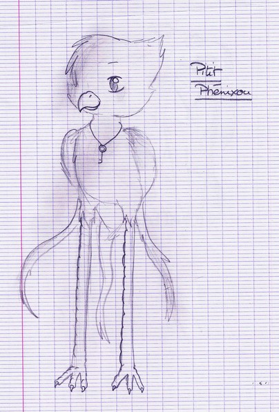 Mes dessins - Page 6 Scan0112