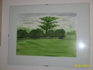 le mie opere d'arte (hihihi) S5004316