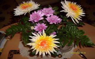 Happy Birthday Mulan Blumen10