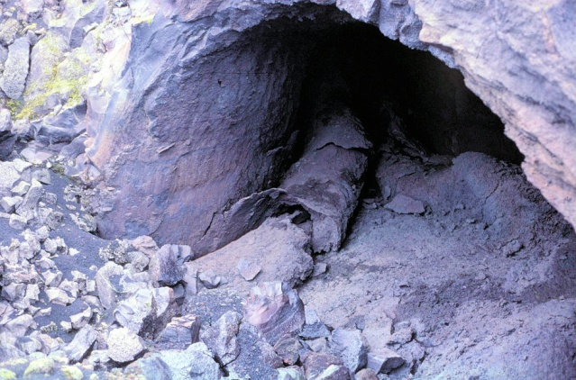 Rock planting named 'Pandora' Transp10