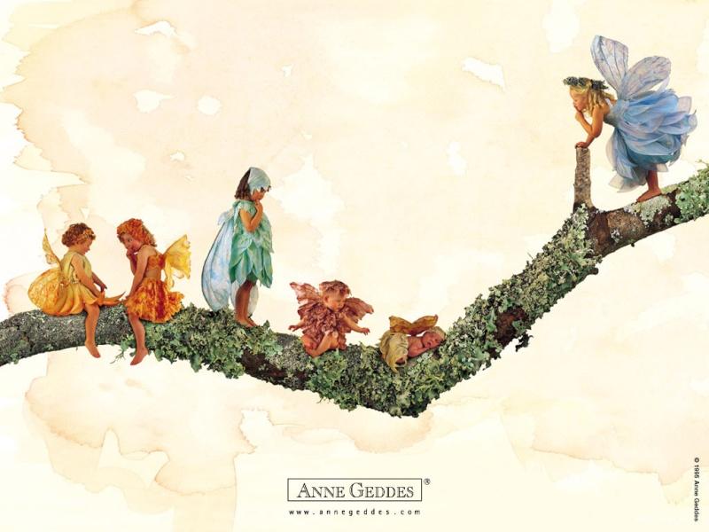 Chùm ảnh bé và hoa - Anne Geddes 15210