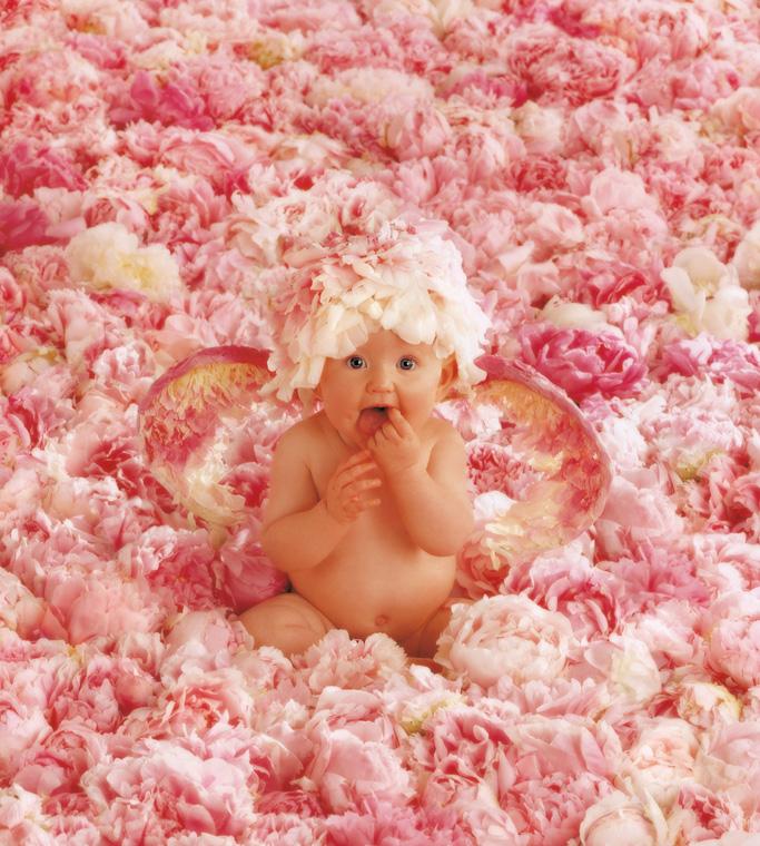 Chùm ảnh bé và hoa - Anne Geddes Alol_011