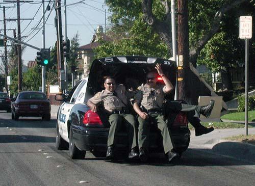 Chiện... cảnh sát Cop310