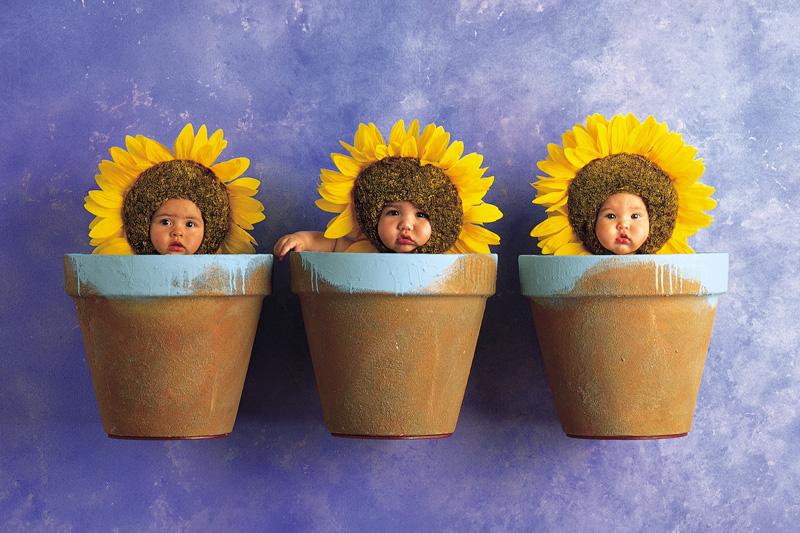 Chùm ảnh bé và hoa - Anne Geddes Dig_0810