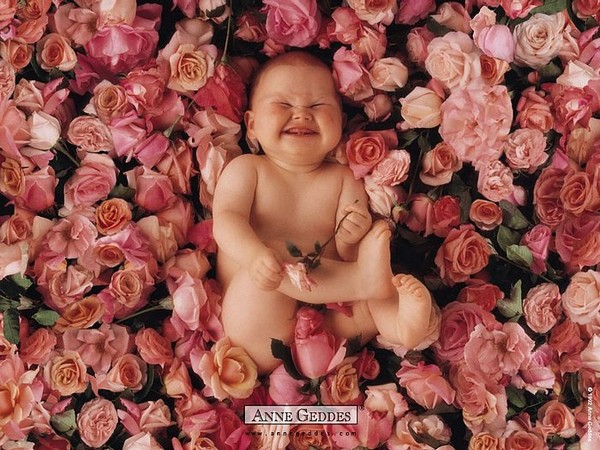 Chùm ảnh bé và hoa - Anne Geddes Me-man15