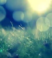 Trạng thái thiên nhiên yêu thích nói gì về bạn? Nang_s10