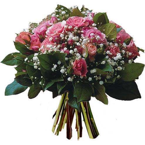 fleurs 2ye84s10