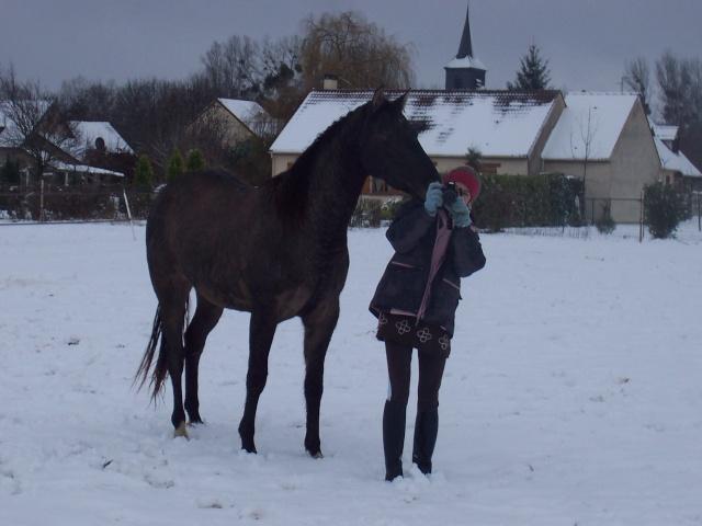 Les chevaux et la neige - Page 2 Smooky10