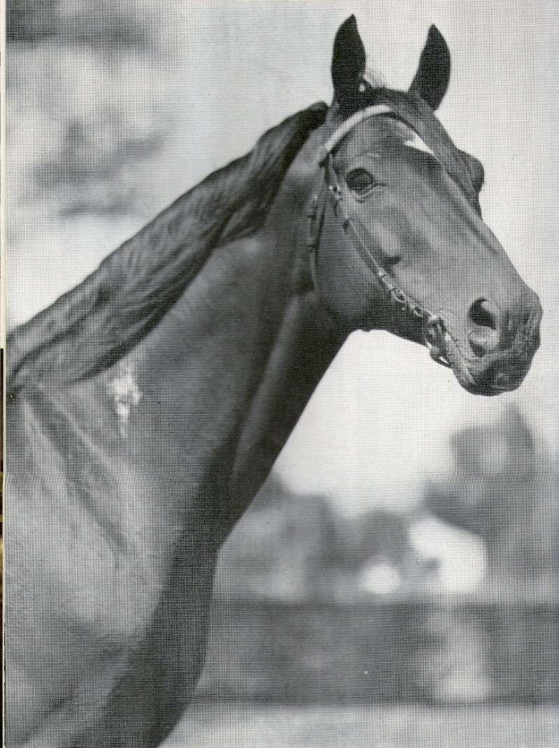 REVISTA JOCKEY CLUB - Marzo 1969 N° 10 Img11110
