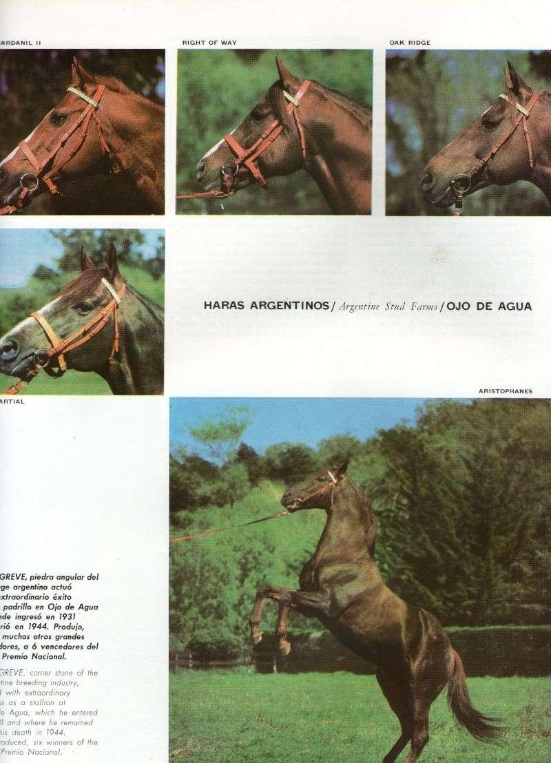 REVISTA JOCKEY CLUB - Marzo 1969 N° 10 Img11210