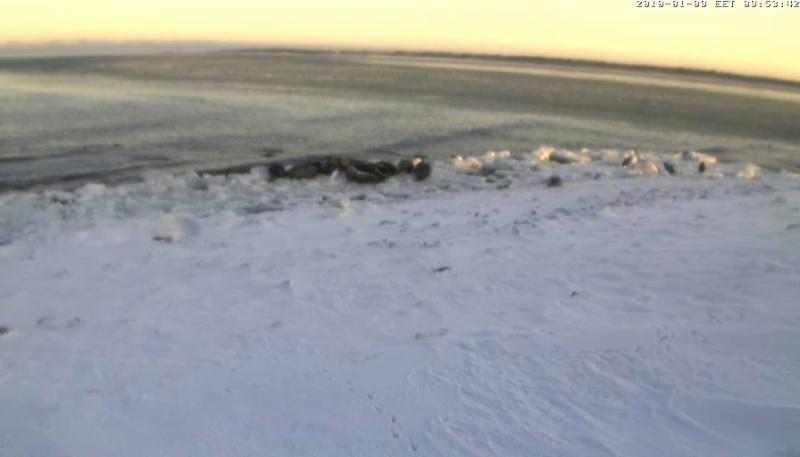 Grey Seal webcam - Page 6 Wmplay24