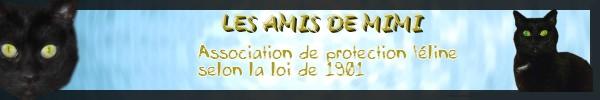 Rescue-Est Les_am11