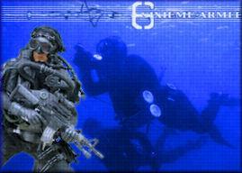 SIXIEME ARMEE - Portail Esquis11