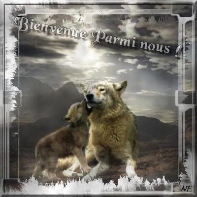 créer un forum : La guerre des loups 11149410